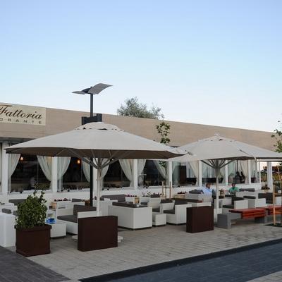 Restaurant La Fattoria foto 2