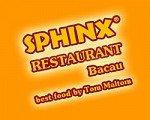 Logo Restaurant Sphinx Bacau