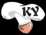 Logo Pizzerie Karyna Bucuresti